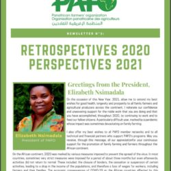 Retrospectives 2020, Perspectives 2021